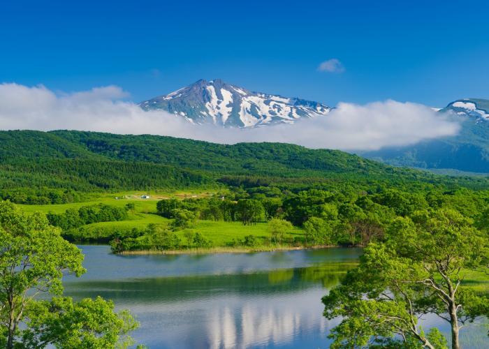 扇谷地溜池(冬師湿原)
