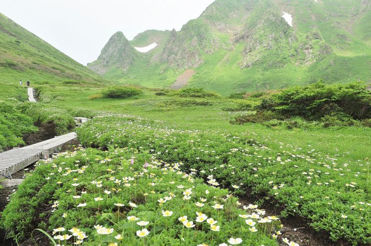 駒ヶ岳(秋田県)