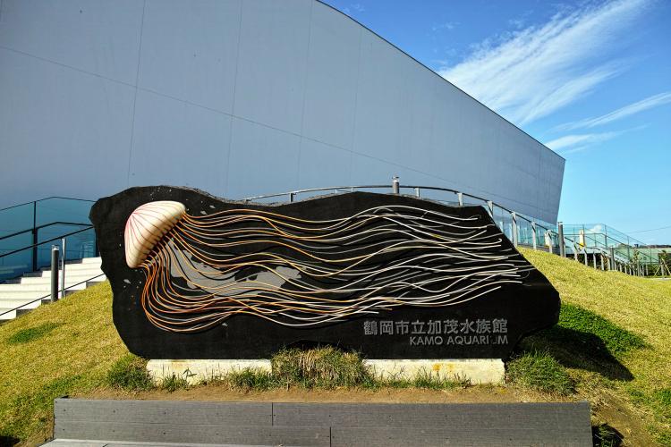 鶴岡市立加茂水族館(クラゲ水族館)