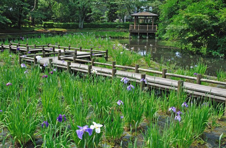 鶴岡公園(大寳館)