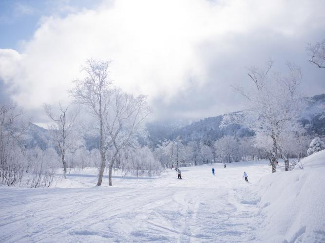 箕輪スキー場