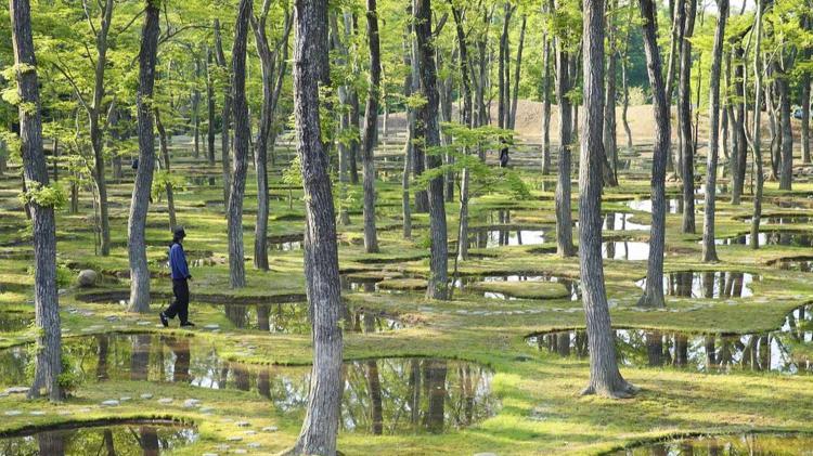 水庭(アートビオトープ那須)