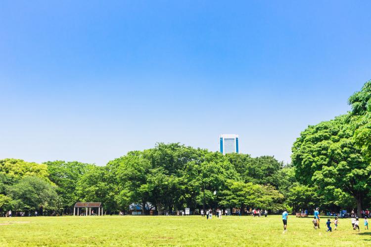 代々木公園(代々木競技場)