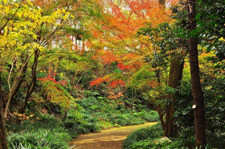 金沢自然公園(金沢動物園)