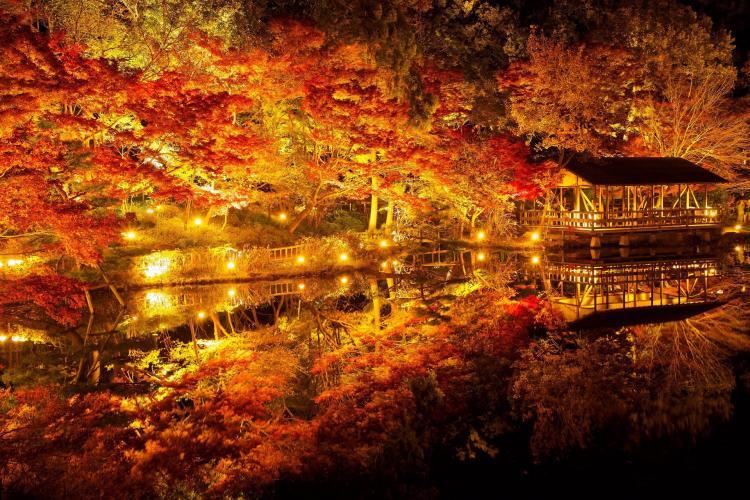 東山動植物園(東山公園・東山スカイタワー)
