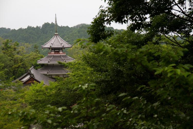 【世界遺産】金峯山寺