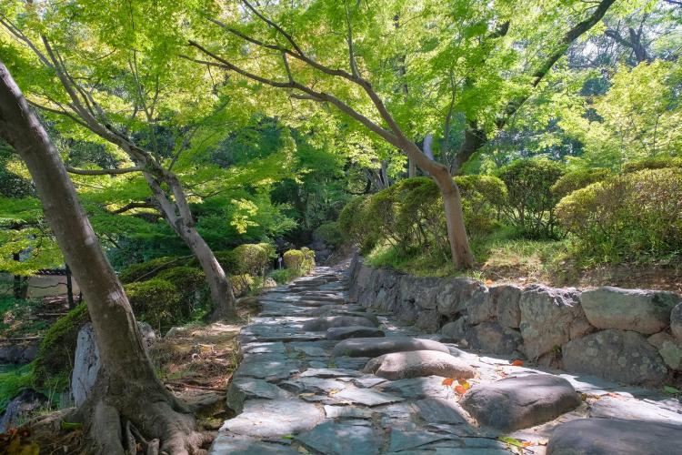和歌山城・紅葉渓庭園