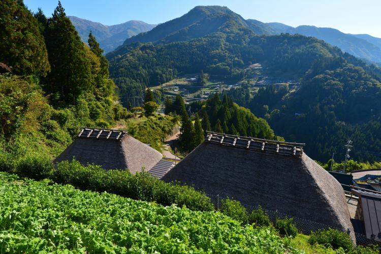 東祖谷山村落合伝統的建造物群保存地区