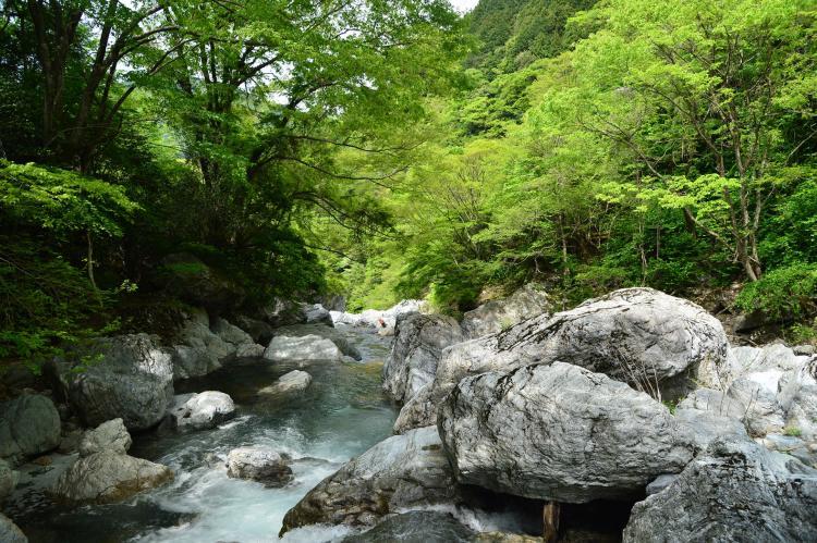 岩屋川渓谷
