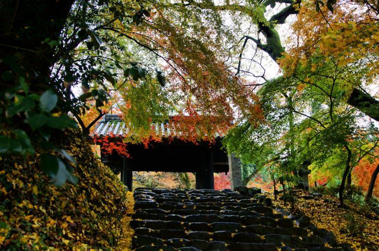 秋月伝統的建造物群保存地区