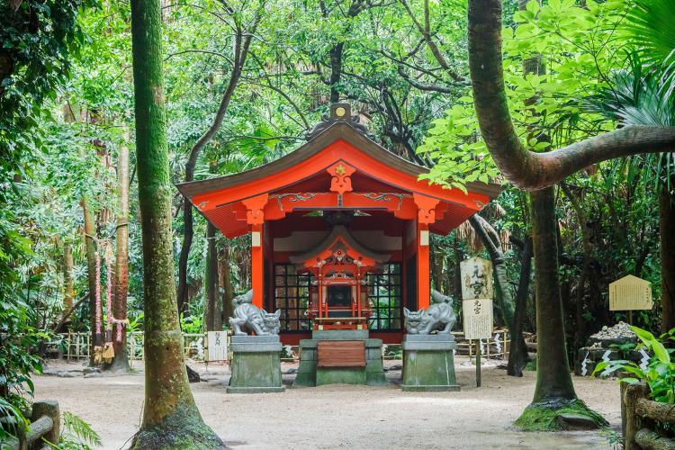 青島神社(鬼の洗濯板)